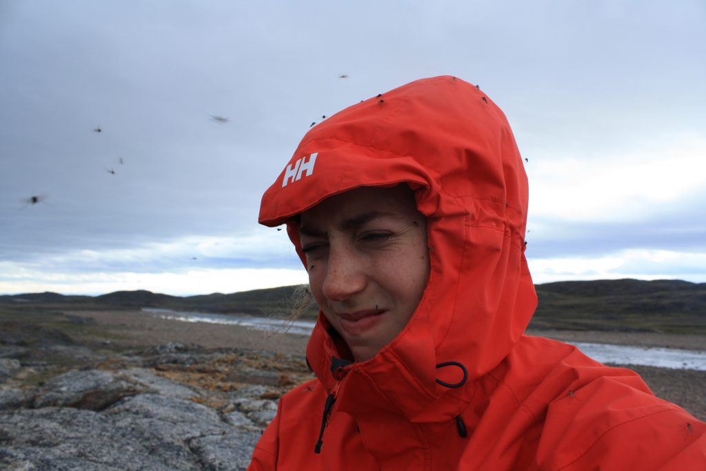 Bugs while guiding in Nunavut
