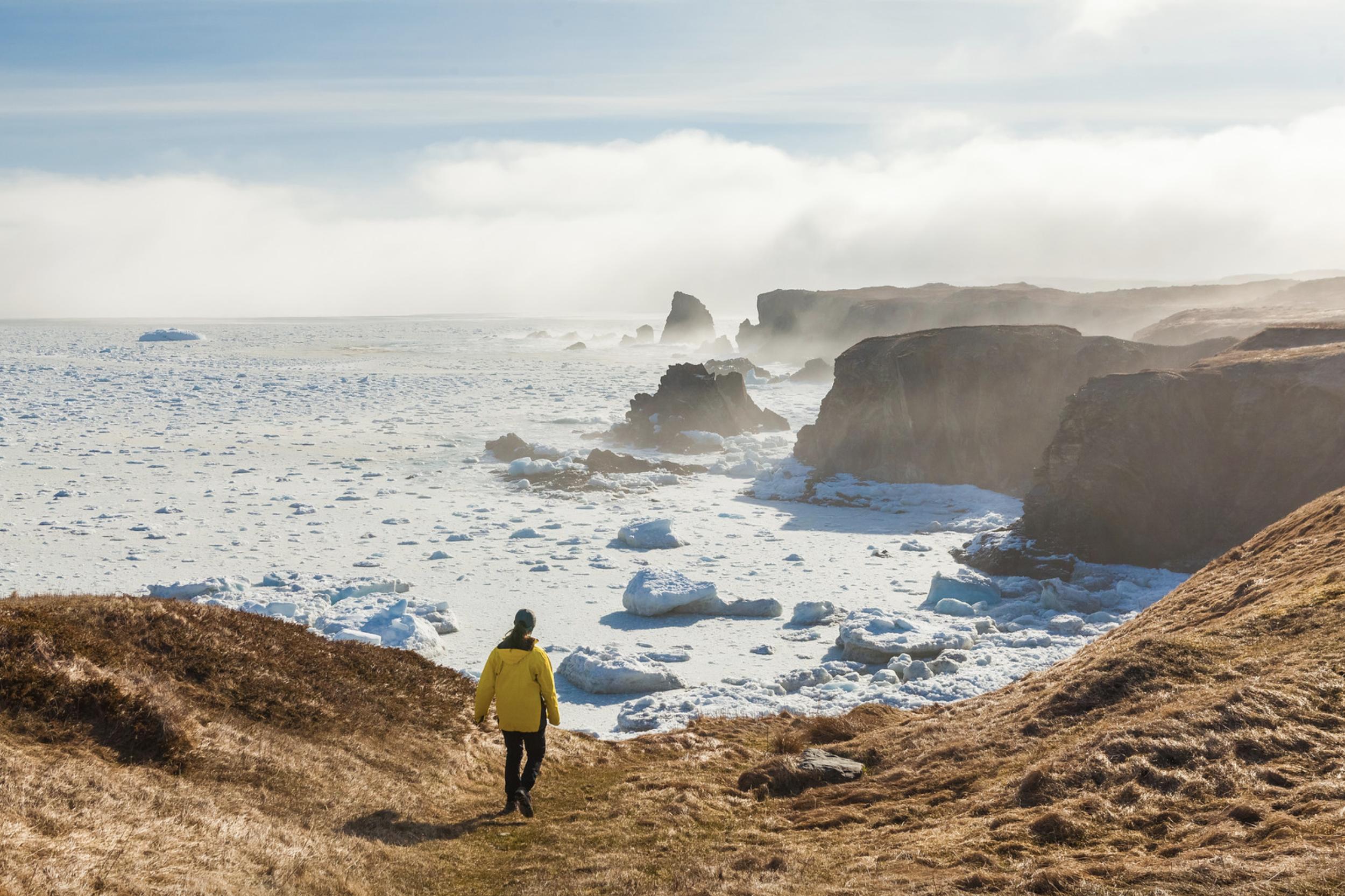 Zach Baranowski Photography Newfoundland