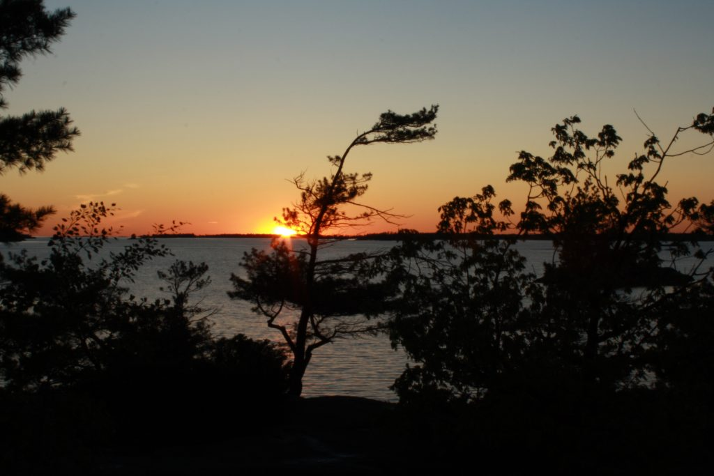 Sunset behind pine trees on Beausoleil Island
