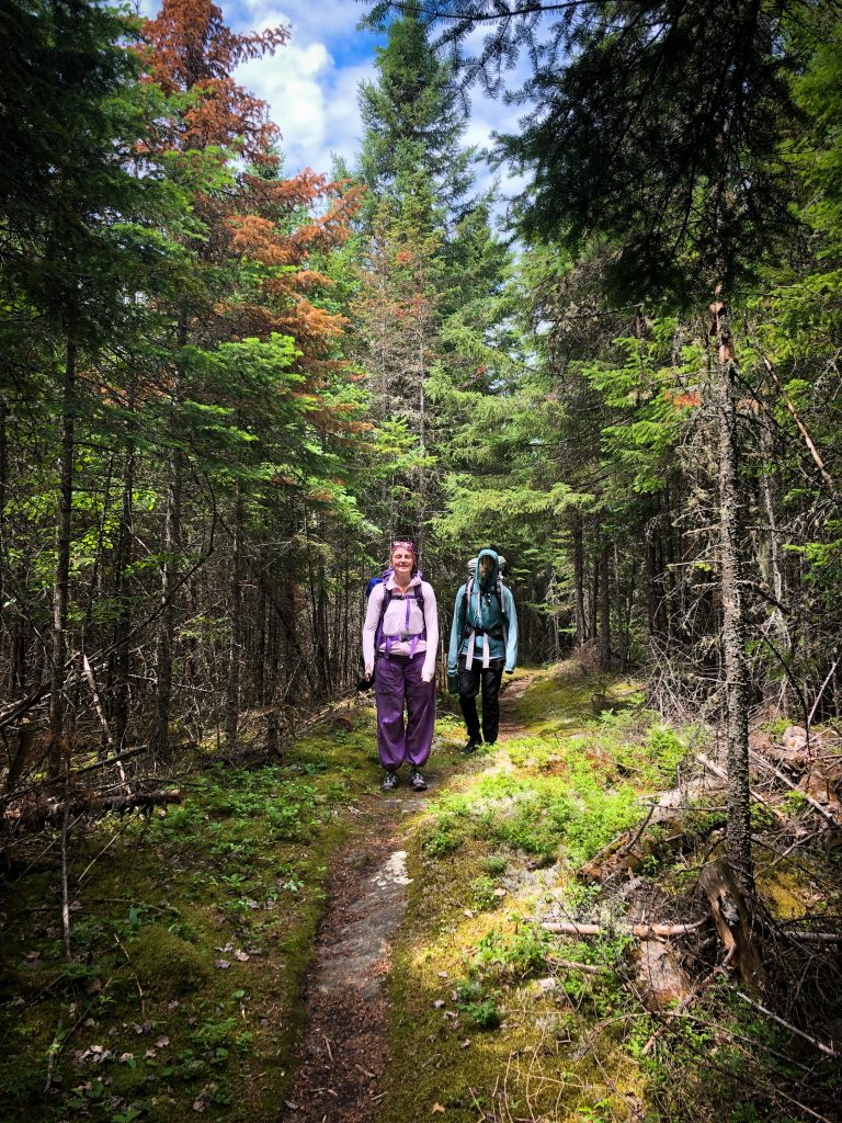 Two hikers on a trail, surrounded by trees and green moss on the ground