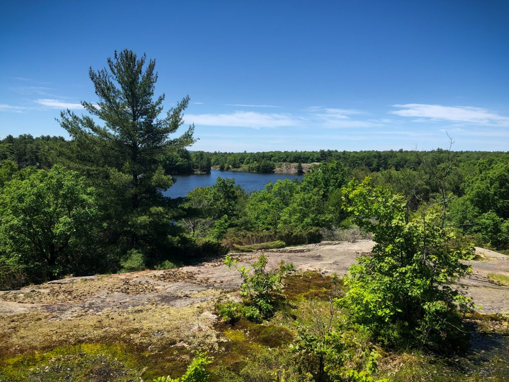View from a highpoint on McCrae Lake hike